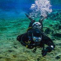 plongees-sous-marine-encadrees